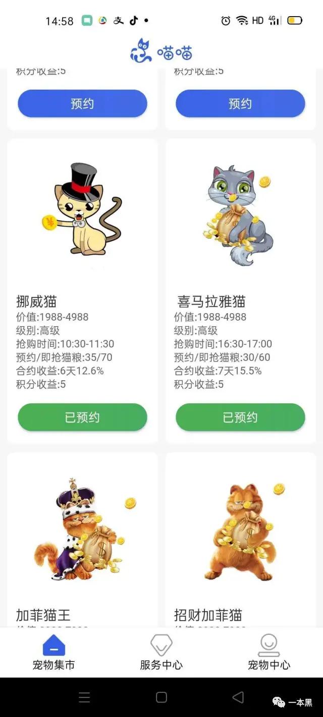 """6000多人""""云养猫""""被骗上亿,为什么总有傻逼要投资金盘?插图(2)"""
